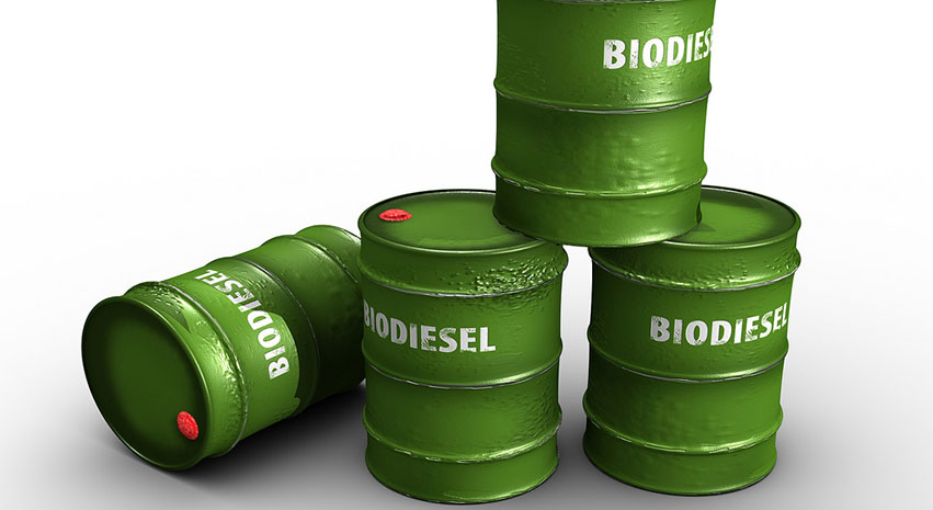 bio - 5 Things to Consider Before Running Your Car on Biodiesel