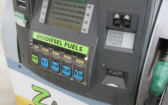 bio6 563x353 - From Fryer to the Fuel Tank - Basic Things to Understand before giving it a Try