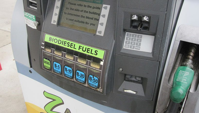 bio6 818x465 - From Fryer to the Fuel Tank - Basic Things to Understand before giving it a Try